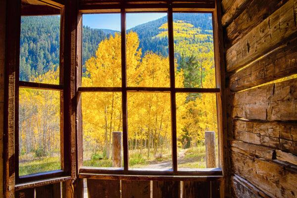 Ashcroft's Window