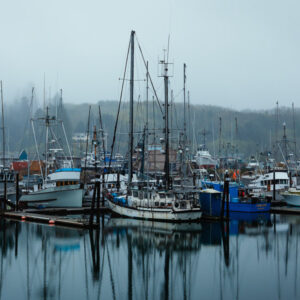 Salmon Harbor