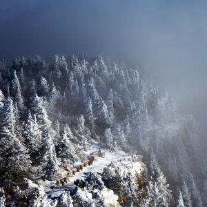 Snowhere Trail