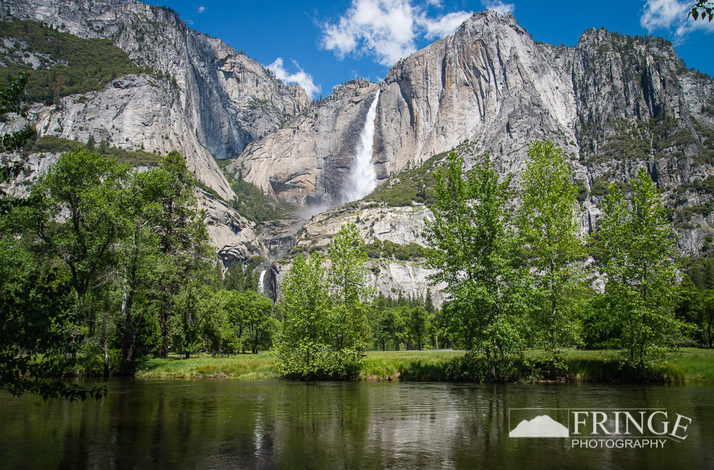 Yosemite's Treasures
