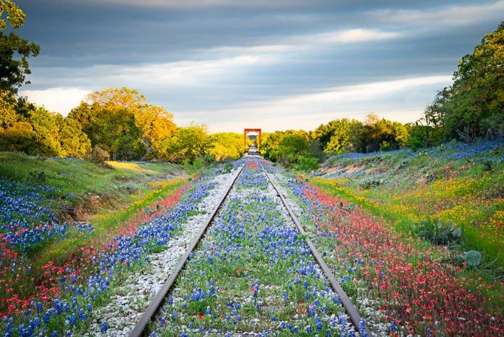 Flower Rails